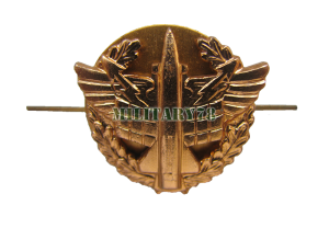 emblema-voysk-protivovozdushnoy-oborony