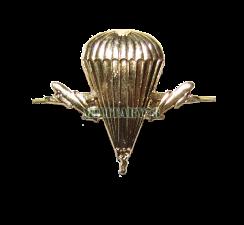 emblema-vdv
