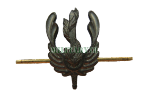 emblema-ekologicheskie-voyska