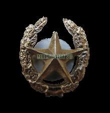 emblema-obschevoyskovaya
