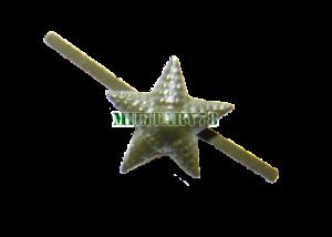 zvezda-pogonnaya